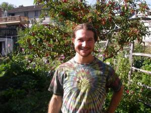 Sage, hollyhock-leaf muncher