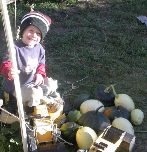 harvest 2009 025